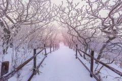Deogyusan-Berge wird durch Schnee bedeckt Lizenzfreie Stockfotos