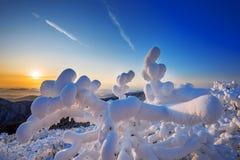 Deogyusan-Berge wird durch Schnee im Winter, Südkorea bedeckt Stockfoto