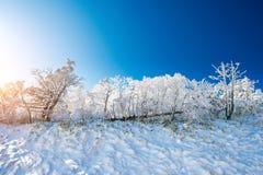 Deogyusan-Berge wird durch Schnee im Winter, Südkorea bedeckt Lizenzfreies Stockfoto