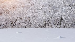 Deogyusan-Berge wird durch Schnee im Winter, Südkorea bedeckt Lizenzfreies Stockbild