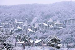 DEOGYUSAN, CORÉE - 23 JANVIER : Vue de station de vacances de Deogyusan en hiver Photographie stock