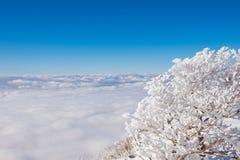 Deogyusan in de winter, Korea Royalty-vrije Stock Foto's