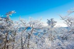 Deogyusan in de winter, Korea Stock Afbeeldingen