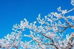 Deogyusan en el invierno, Corea foto de archivo