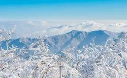 Deogyusan en el invierno, Corea imágenes de archivo libres de regalías