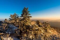 Deogyusan góry przy wschodem słońca w zimie, Południowy Korea Obrazy Stock