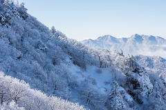 Deogyusan im Winter, Korea Lizenzfreies Stockfoto