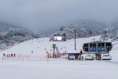 DEOGYUSAN, KOREA - 23. JANUAR: Skifahrer und Touristen in Deogyusan Stockbilder