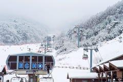 DEOGYUSAN, KOREA - 23. JANUAR: Skifahrer und Touristen in Deogyusan Lizenzfreies Stockbild