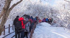 DEOGYUSAN, KOREA - 23. JANUAR: Touristen, die Fotos machen Stockbilder