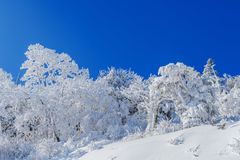 Deogyusan mountains is covered by snow in winter,South Korea.  Stock Photography