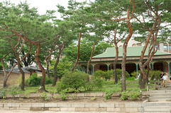 Deoksugungs-Palast in Seoul mit Bäumen Stockfotos