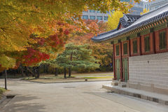 Deoksugungs-Palast in Seoul, Südkorea Stockfotografie