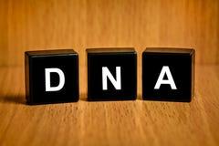 Deoxyribonucleic acid or DNA word on black block Stock Photos