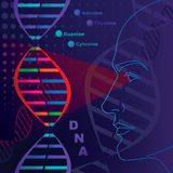 Deoxyribonucleic Acid research Royalty Free Stock Image