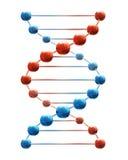 Deoxyribonucleic zuur vector illustratie