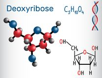 Free Deoxyribose Molecule, It Is A Monosaccharide Deoxy Sugar, Royalty Free Stock Image - 106052376