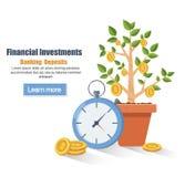 depósito Conceito do dinheiro da economia Crescimento de lucro financeiro Aumente no lucro Planta-dinheiro do processo do crescim Fotos de Stock Royalty Free