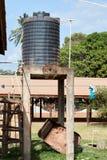 Depósito de abastecimento plástico residencial de água na plataforma elevado em Lethem Guiana imagens de stock