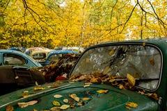 Depósito de chatarra automotriz antiguo en otoño - tipo 1/escarabajo abandonados del vintage de Volkswagen - Pennsylvania imágenes de archivo libres de regalías