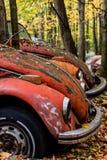 Depósito de chatarra automotriz antiguo en otoño - tipo 1/escarabajo abandonados del vintage de Volkswagen - Pennsylvania fotografía de archivo