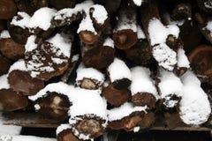 Depósito de lenha do inverno Fotografia de Stock