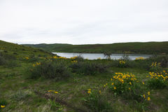 Depósito de Mann Creek, Idaho imagenes de archivo