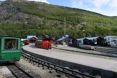Depósito locomotivo na estrada de ferro pacífica do sul no mundo Fotografia de Stock