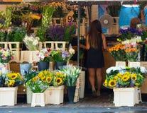 Departamento de flor Fotografía de archivo libre de regalías