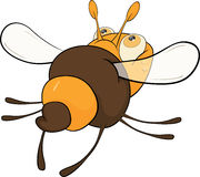 Departing bee. Cartoon. It is yellow a brown departing bee with transparent wings Stock Image