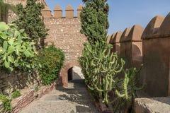 Departure from La Alcazaba. This is the exit of La Alcazaba Royalty Free Stock Photos