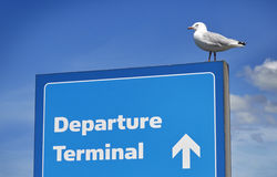 Departure Sign and seagull Stock Photography