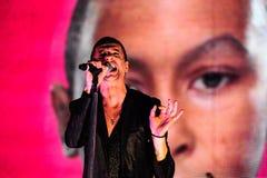 Depeche Mode-Konzert Stockbilder