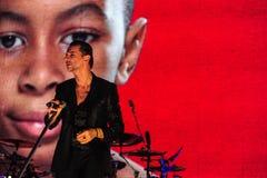 Depeche Mode-Konzert Lizenzfreies Stockbild
