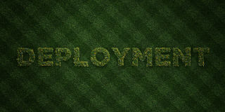 DEPLOYMENT - fresh Grass letters with flowers and dandelions - 3D rendered royalty free stock image. Can be used for online banner ads and direct mailers Stock Photos