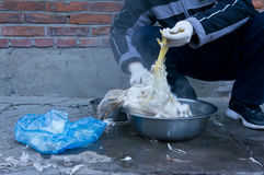 Deplumation del pollo Immagini Stock Libere da Diritti