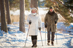Deporte de invierno en Finlandia - el caminar nórdico fotos de archivo