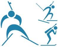 Deporte de invierno - iconos del Biathlon fijados Foto de archivo libre de regalías
