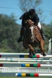 Deporte de salto del caballo Fotografía de archivo libre de regalías