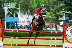 Deporte de salto del caballo Imagen de archivo libre de regalías