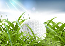 Deporte del golf Foto de archivo