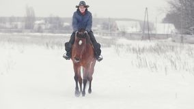Deporte ecuestre - mujer del jinete en el caballo que camina en al aire libre nevoso almacen de metraje de vídeo
