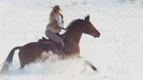 Deporte ecuestre - mujer del jinete en el caballo que galopa en campo nevoso fotos de archivo libres de regalías