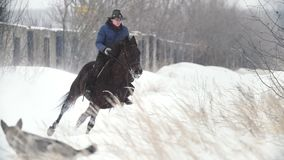 Deporte ecuestre - mujer del jinete en el caballo rápido que galopa en campo nevoso almacen de metraje de vídeo