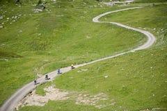 Deporte Freeride del montar a caballo de Mountainbiker fotos de archivo libres de regalías