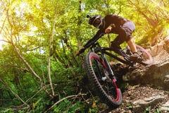 Deporte Un ciclista en una bici con una bici de montaña en el bosque Imágenes de archivo libres de regalías