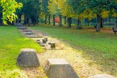 Deporte y salud en parque otoñal Fotos de archivo