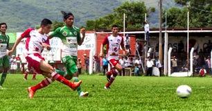 Deportes de los hombres de los adultos, partido de fútbol Imágenes de archivo libres de regalías