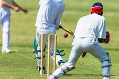 Depositário do wicket do batedor do jogador da ação do grilo Fotografia de Stock Royalty Free