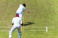 Depositário do wicket da bola do batedor da ação do grilo aéreo Fotos de Stock Royalty Free
